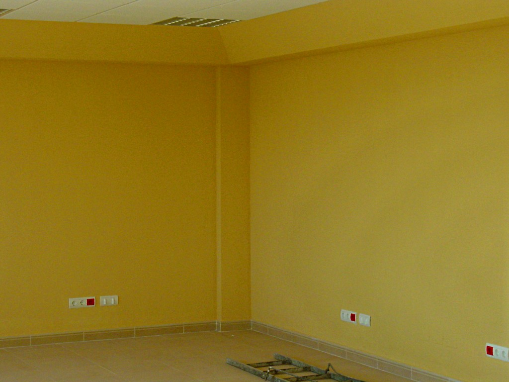 Pintura pl stica tipos de pintura pictor decoris - Pintura de pared ...